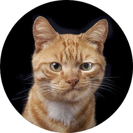 Capa Personalizada para Estepe Ecosport Crossfox Felino Gato Amarelo