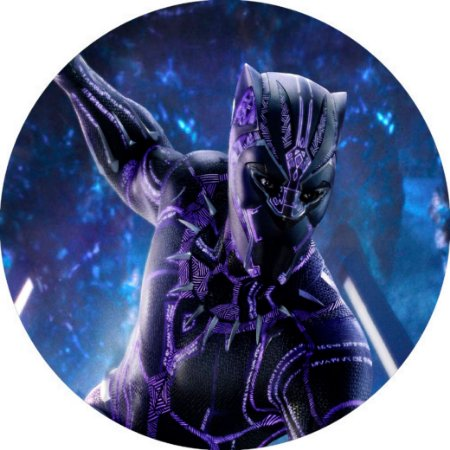 Capa Personalizada para Estepe Ecosport Crossfox Pantera Negra Marvel 8