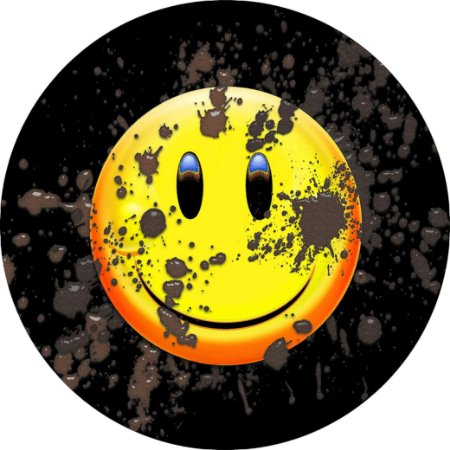 Capa Personalizada para Estepe Ecosport Crossfox Smile Off-Road