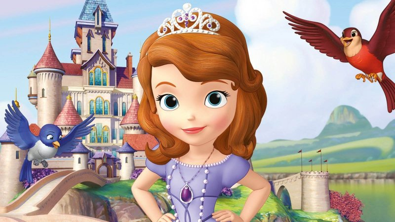 Painel de Festa Infantil Personalizado em Tecido Princesa Sofia 6 PA94