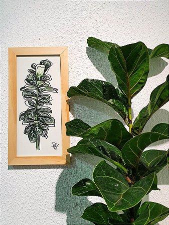 Quadro Feito a Mão (30x16cm) - Ficus Lyrata