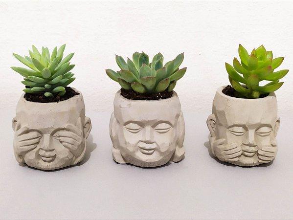 Trio de Suculentas linha Zen | Mini