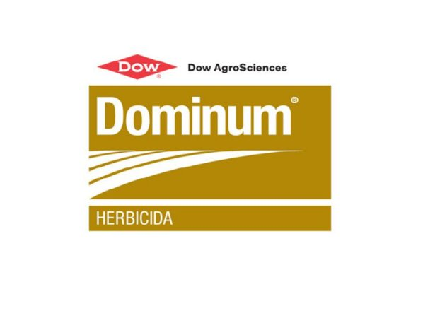 Dominum  - 20LT