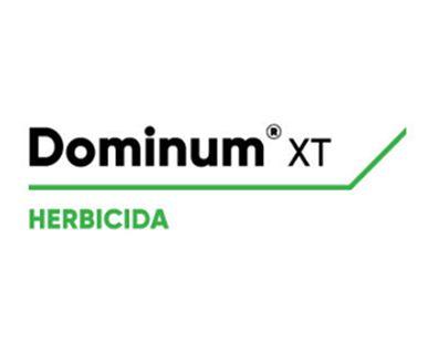Dominum XT  - 1LT
