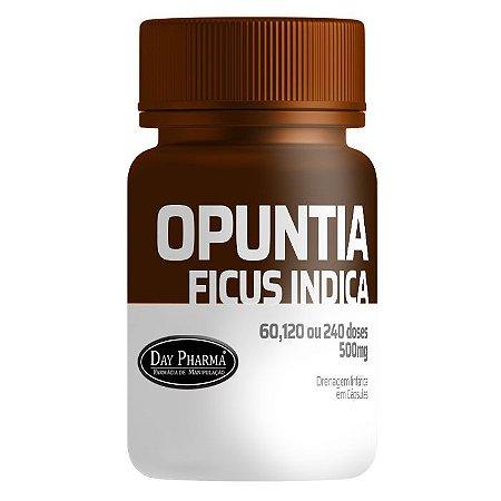 Opuntia Fícus-Indica