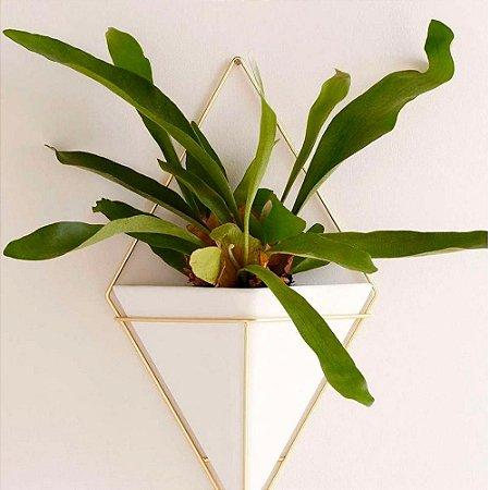 Vaso Decorativo De Parede Trigg Grande - Umbra Design