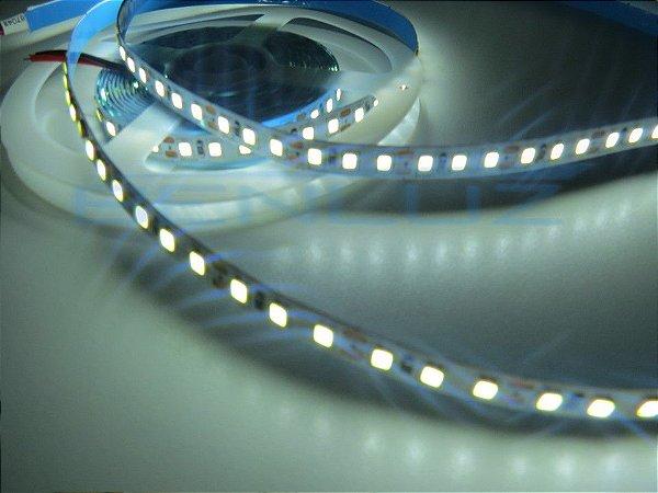 Fita 120 LEDs por Metro 3528 Branco Frio sem Silicone IP20 5M