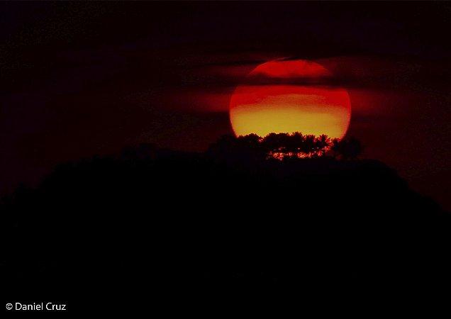 Nascer do sol contrastando com árvores e nuvens