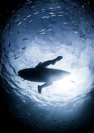 Foto em baixo d'água com cardume e surfista sentado em sua prancha
