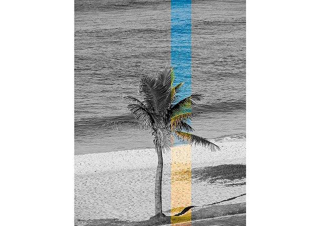 Coleção de cores com preto e branco na beira do mar