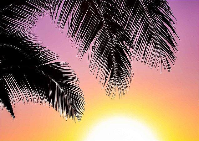 Palmeiras no sol poente