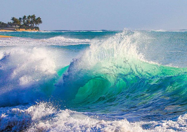 Shorebreak Hawaii
