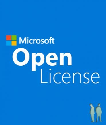 Windows Server Standard Core 2019 SNGL OLP 2 Core