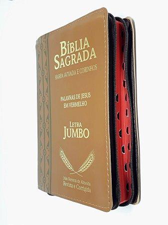 Bíblia Sagrada Letra Jumbo Zíper Capa Marrom - CPP