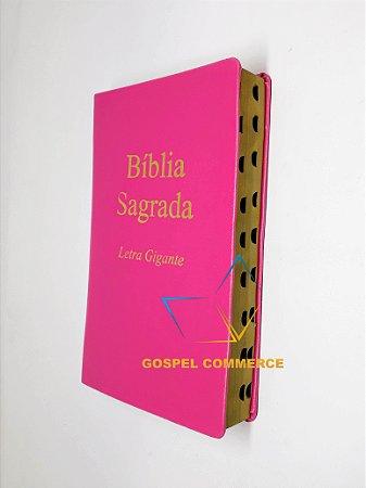 Bíblia Sagrada Letra Gigante PINK SEM Harpa