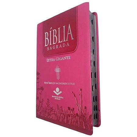 Bíblia Sagrada Letra Gigante - Pink Ntlh - Sbb