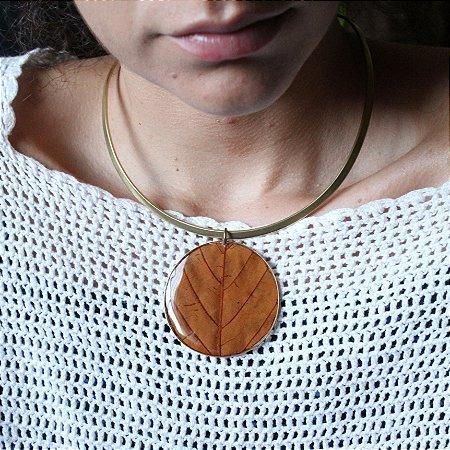 Folha de Amendoeira