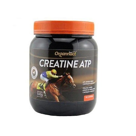 CREATINE ATP 500GR