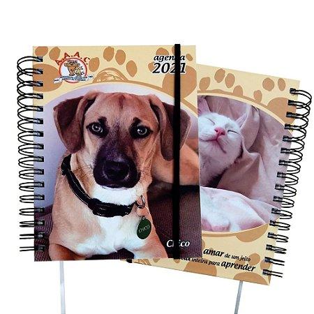 Agenda 2021 Cachorro
