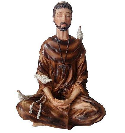 São Francisco de Assis em Resina (18cm)