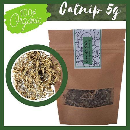 Erva de Gato - Catnip Orgânico 5 gramas