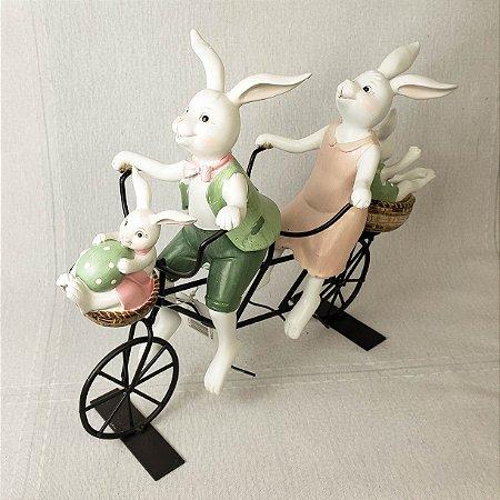 Coelhos de resina andando de bicicleta