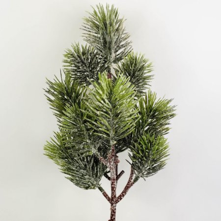Galho Pinus Ravena - 54cm