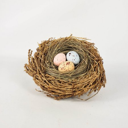 Ninho com Ovos