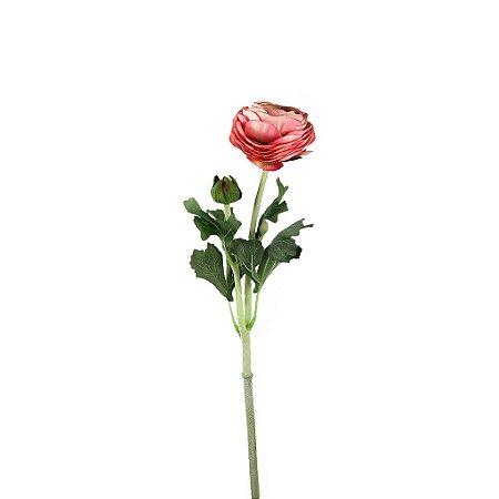 Haste de Ranúnculos - Rosa