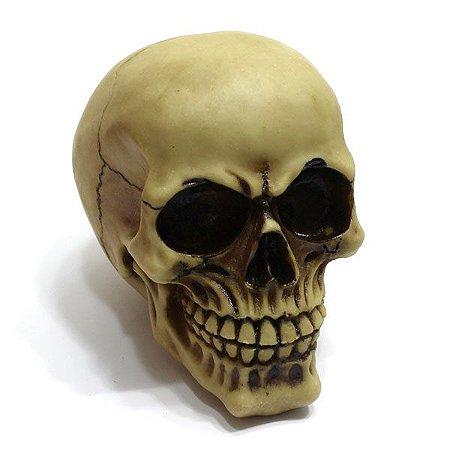 Crânio Decorativo em resina