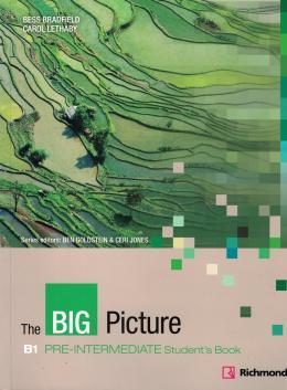 THE BIG PICTURE B1 PRE-INT SB NE