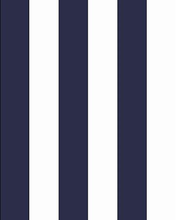 Papel de Parede Listrado Azul e Branco