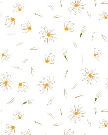 Papel de parede Floral Margaridas ao Vento