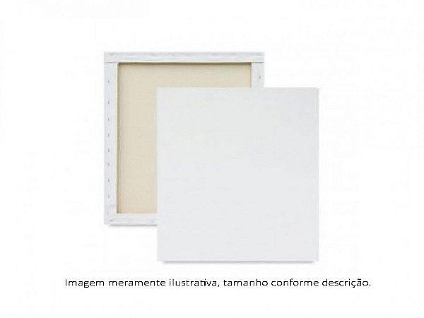 Tela P/ Pintura 20X20Cm Cortiarte