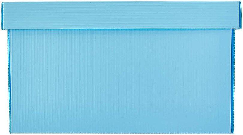 Caixa Organizadora The Best Box G Novaonda Azul Pastel Polibras