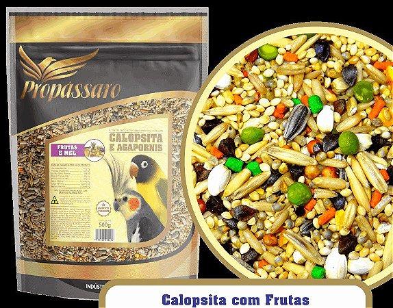 Mistura Calopsita e Agapornis Frutas e Mel 500 g