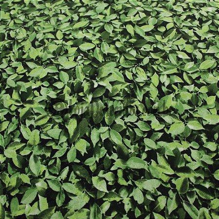 Jacquard Estampado Muro Inglês Folhas Verdes 2,80mt de Largura