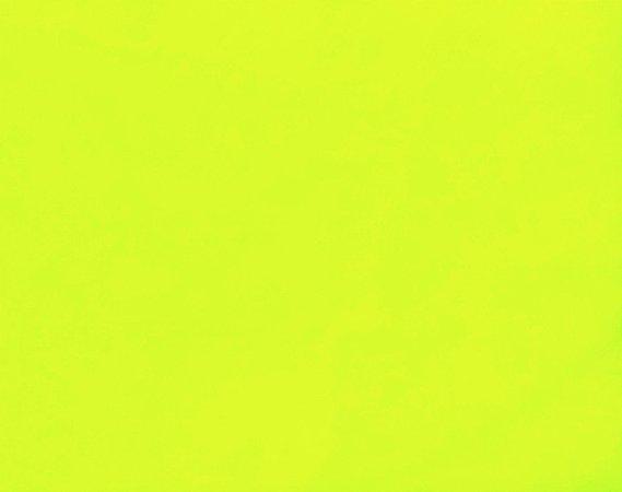 Tactel Liso Amarelo Fluorescente 1,60m de Largura