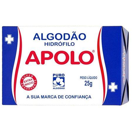ALGODÃO HIDRÓFILO APOLO 25G
