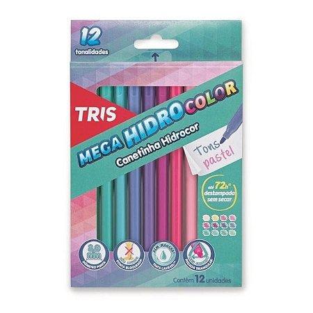 Caneta Hidrocor Mega Hidro Color Tons Pastel 12 Cores | Tris