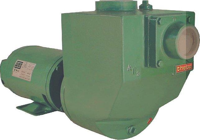 Bomba Autoescorvante Thebe AE-2 1/3 CV monofásica 110V/220V
