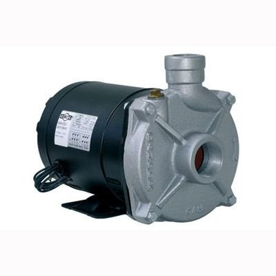 Bomba Centrífuga CAM-W10 1,5CV Monofásico 110/220 V - Bivolt Dancor