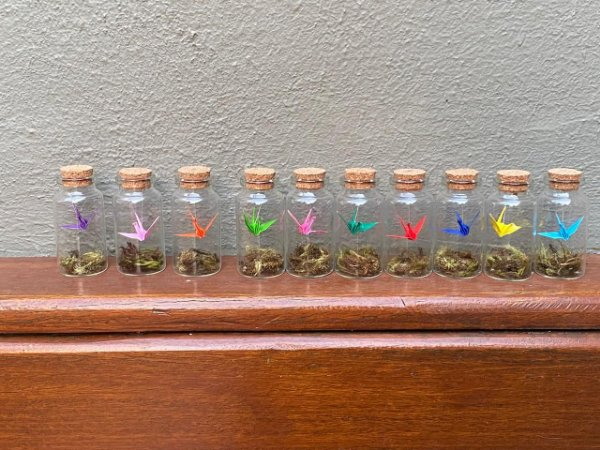 Kit com 10 vidrinho com mini Tsurus coloridos