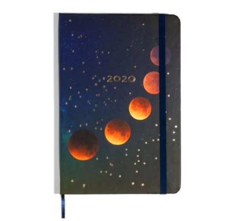 Agenda Planner Cícero 2020 Astral anotações 17x24cm