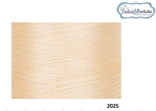 Linha de Bordados Ricamare cone de 4 mil metros B 2025