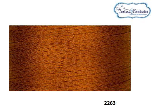 Linha de Bordados Ricamare cone de 4 mil metros N 2263