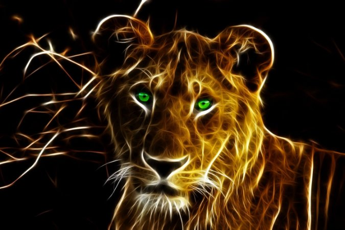 Quadro Leão - Energia 3