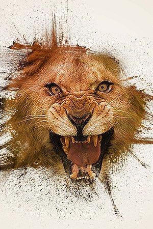 Quadro Leão - Pintura 2