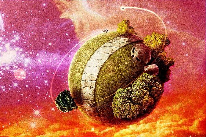 Quadro Dragon Ball - Planeta do Senhor Kaioh