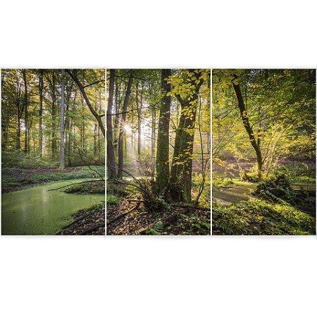 3 Quadros Decorativos Divididos - Floresta Natural